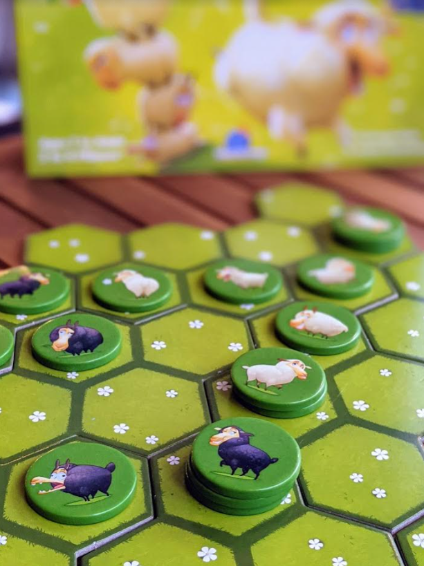 Battle Sheep family-friendly area control strategy game